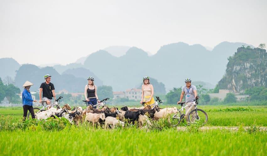 biking around Ninh Binh