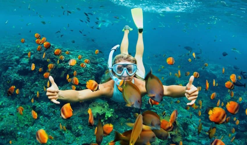 Snorkeling in island near Hoi An