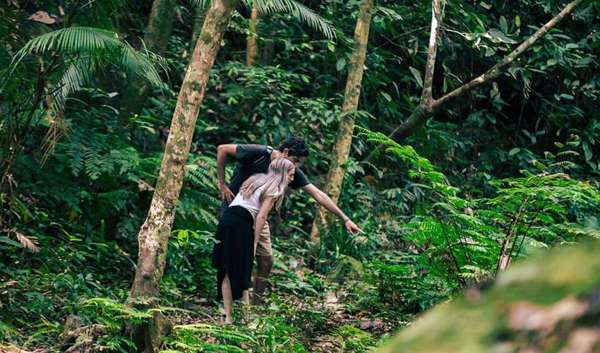 Phong Nha Cave and Botanic Garden Tour - Private Tour